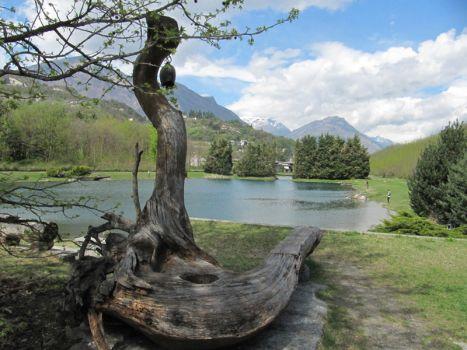 I fiumi belli del mondo for Cabine del fiume kenai soldotna ak