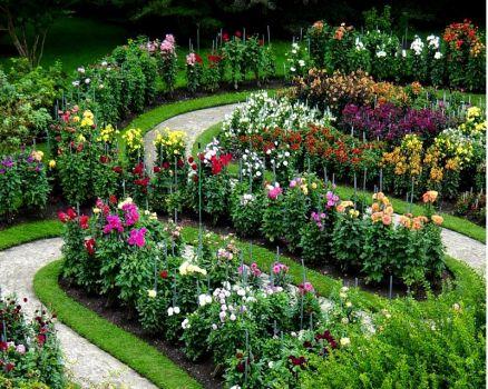 L 39 orto dei colori immagini dal web for Giardini immagini